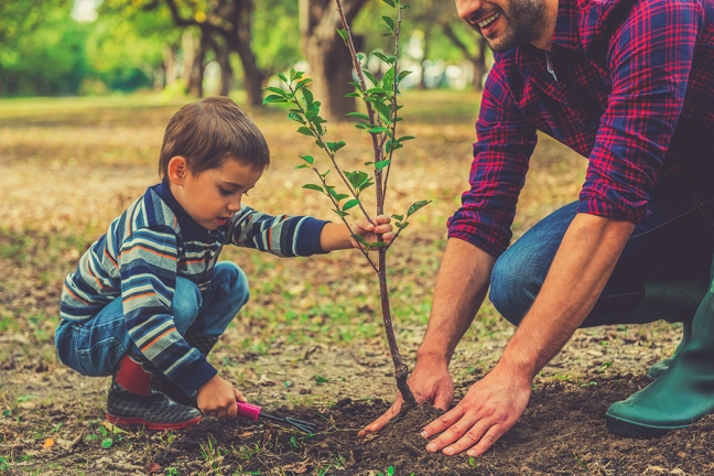 boy planting tree with adult